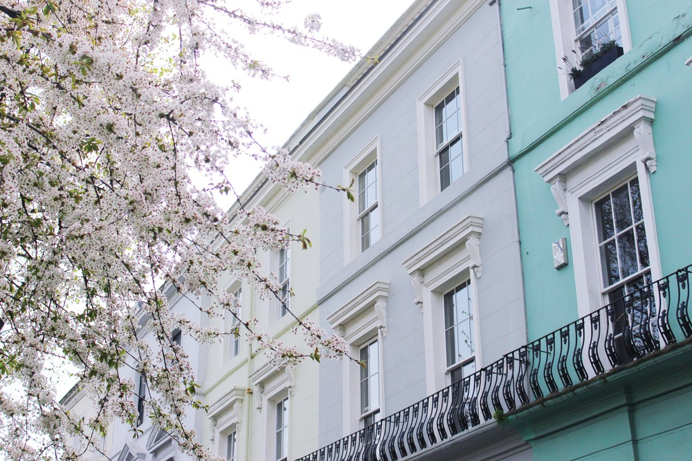 Notting Hill Charm - Cherry Blossoms and Town Houses | Sundays and Somedays
