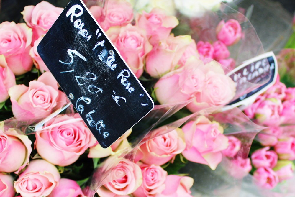Pink Flowers in Paris | Sundays and Somedays