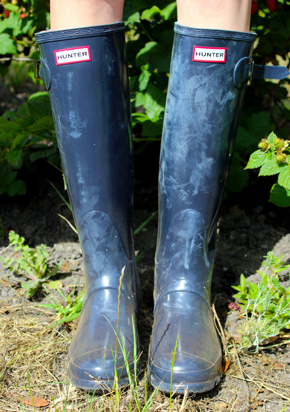 Summertime in Northern California - picking berries and wearing navy blue Hunter boots | Sundays and Somedays