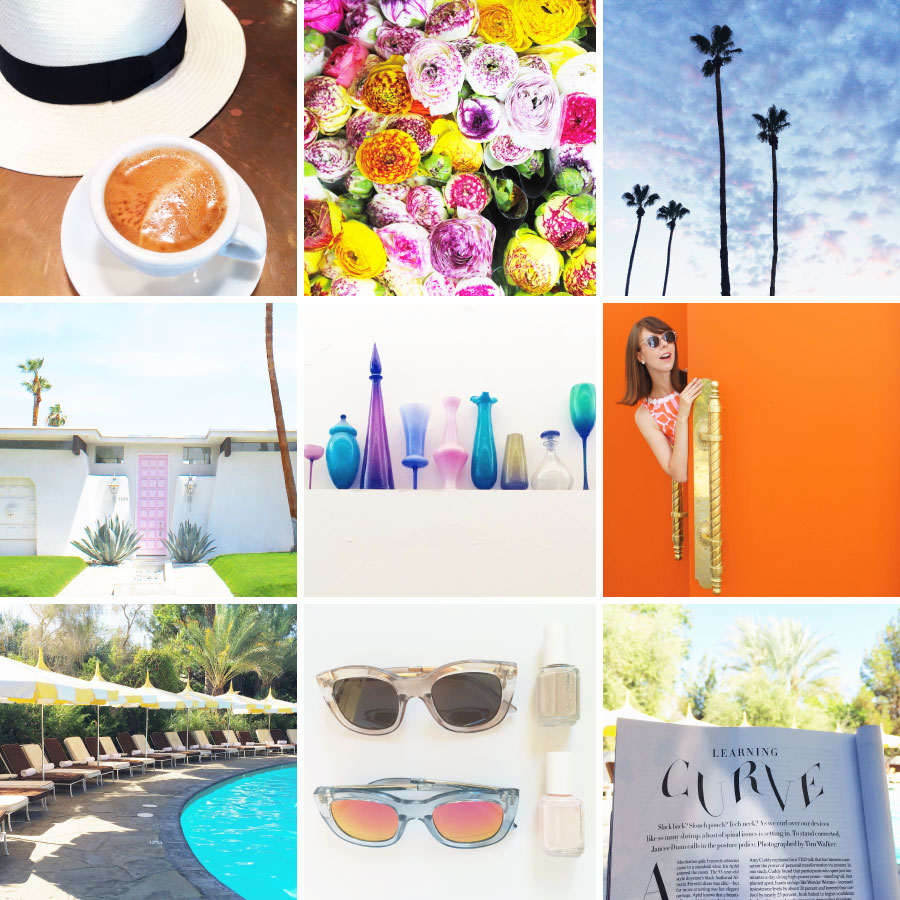 June in Photos - Palm Trees and Palm Springs | Sundays and Somedays