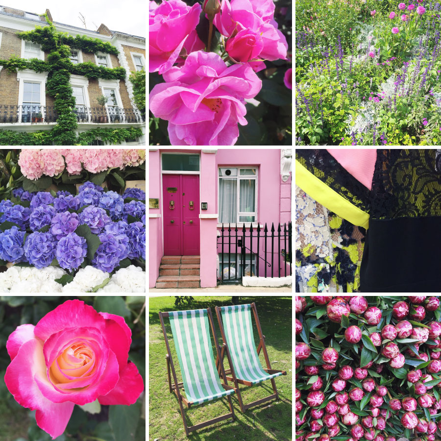 September in photos - rose gardens, striped chairs, and pink houses