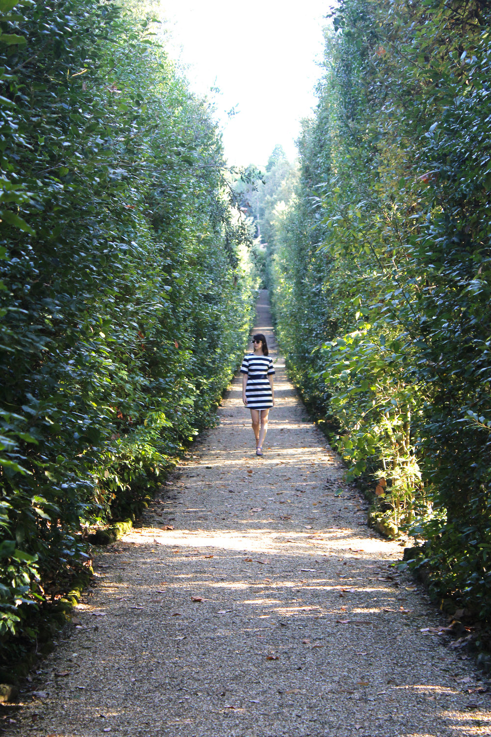 The pretty paths and hedges in the Boboli Gardens, Florence.