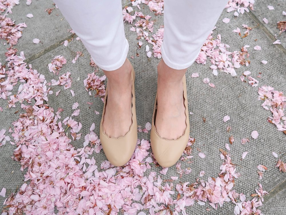 Cherry blossoms in Notting Hill, London | Pink, Purple and Petals | Sundays and Somedays