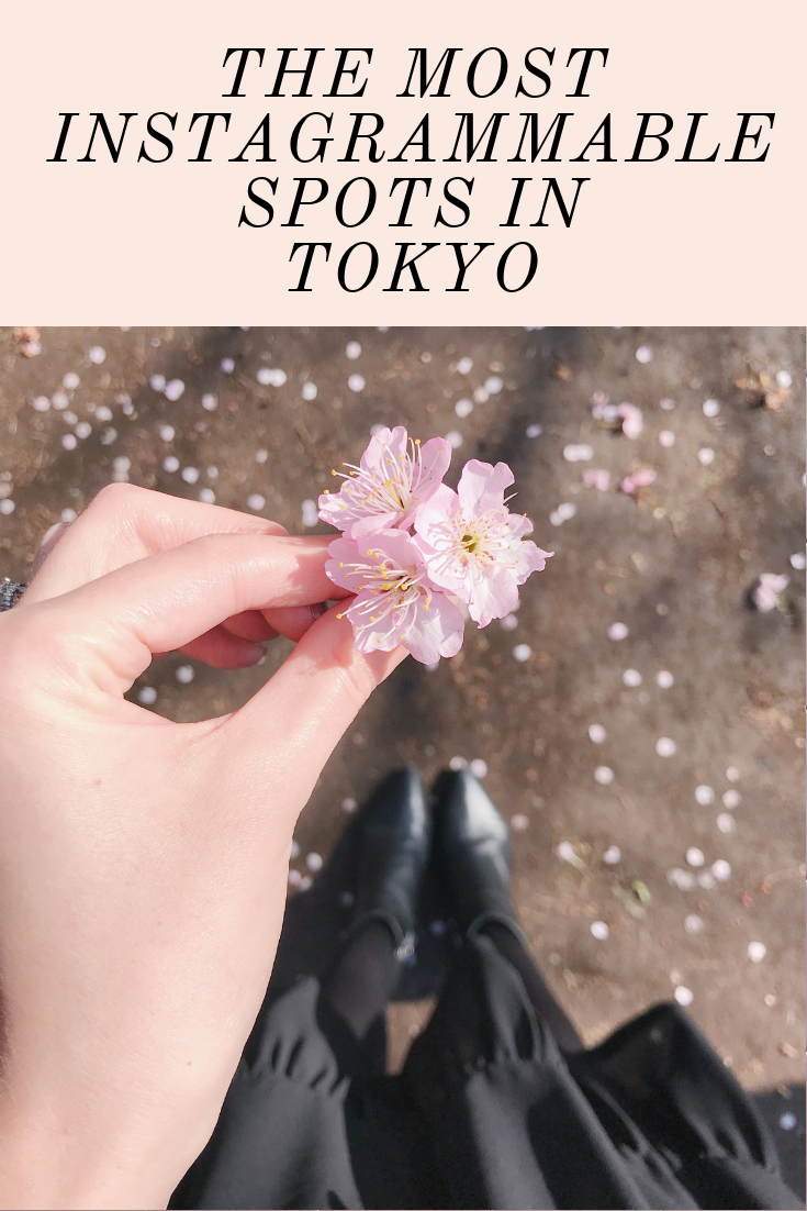 The Most Instagrammable Spots in Tokyo Japan Cherry Blossoms