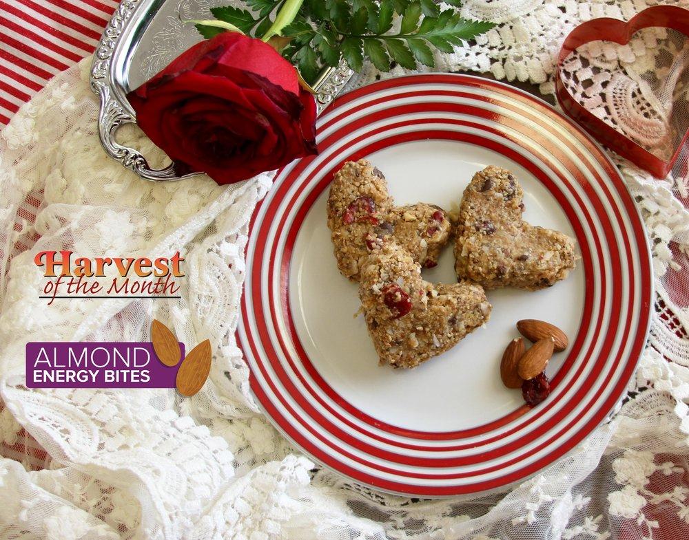 Almond Energy Bites  Photo: Katie Schmidt