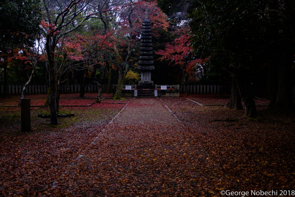 NC_Kyoto-0001.jpg