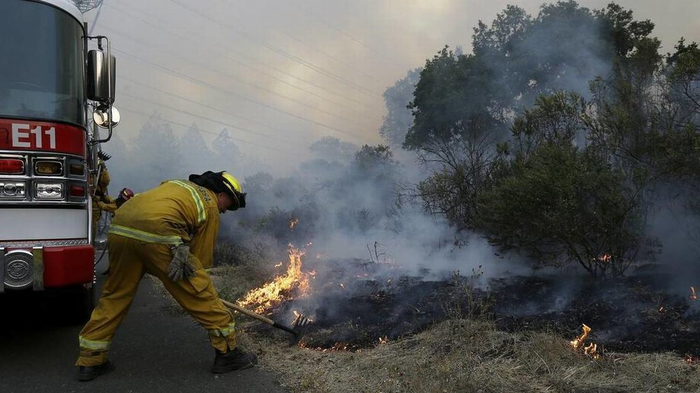 Santa Rosa firefighters work on a fire in Santa Rosa, Calif. Cannabis farms in Mendocino, Sonoma and Napa counties have all been impacted by the fires. Jeff Chiu AP