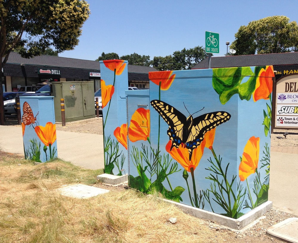 Pleasanton Utility Box
