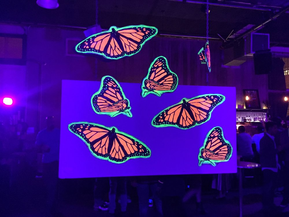 Monarch Butterfly Migration @ 111 Minna Gallery