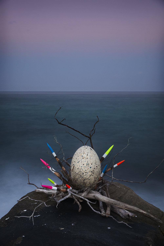 Egg 1 TRENDLAND.jpg
