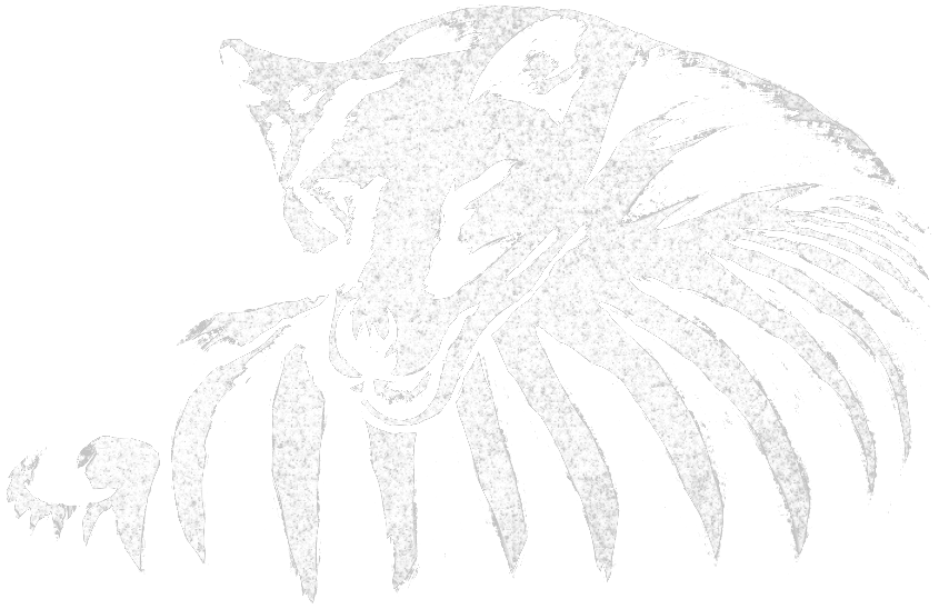 Thylacine-Dream-Paint-Logo-v2-Transparent-Crop No Title.png