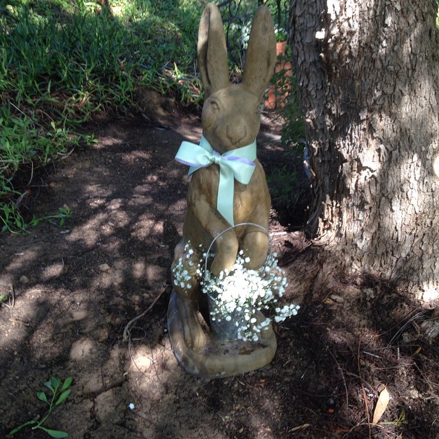 #rhr wedding rabbit
