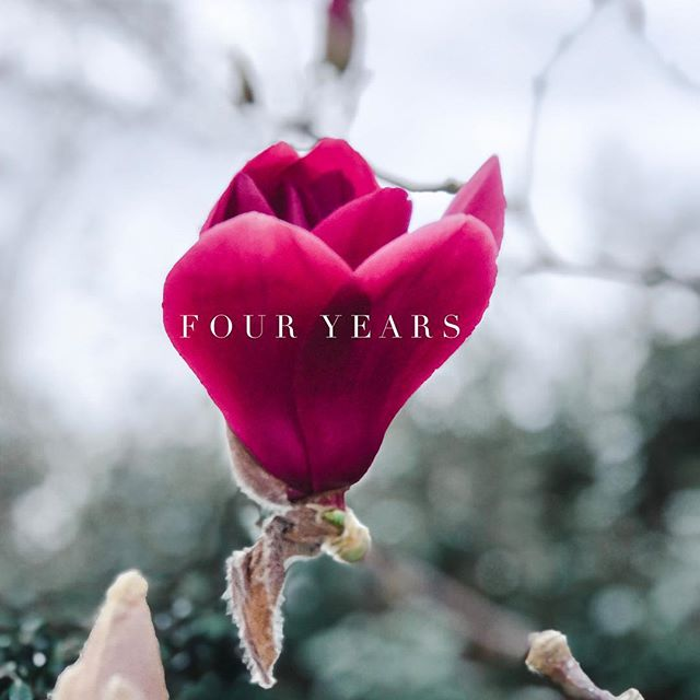 Today's our four year anniversary! So grateful to all our clients and flower friends near and far. You keep me inspired and motivated to keep moving forward and trying new things out. I'm looking forward to what the future year holds!
