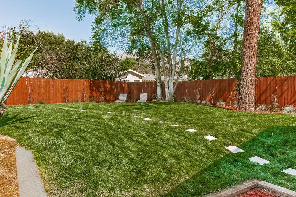 033-Backyard-860683-print.jpg