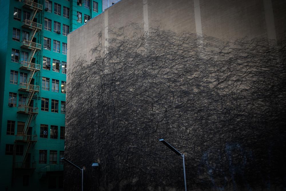UrbanStillLife_004.jpg