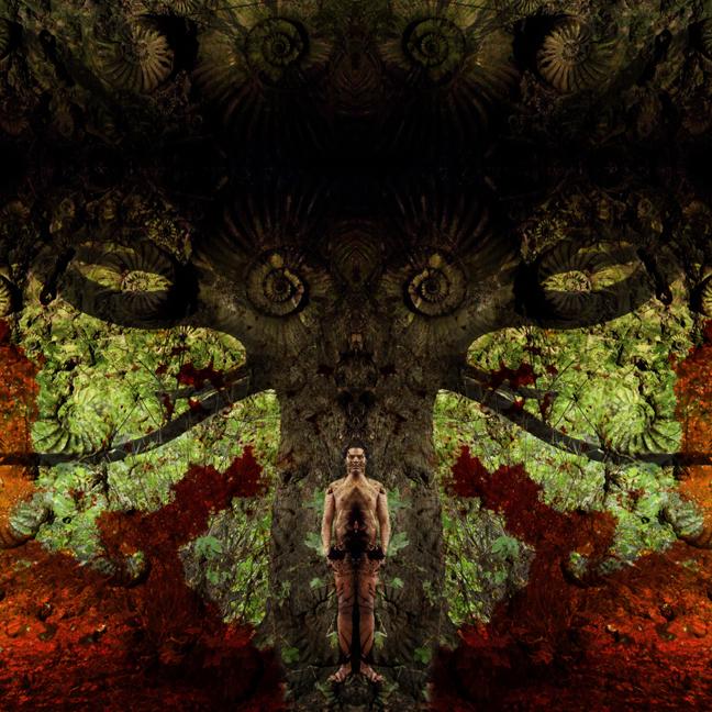 TheAmbidextrousUniverse01.©CopyrightGeorgeChakravarthiAllRightsReserved2015.jpg