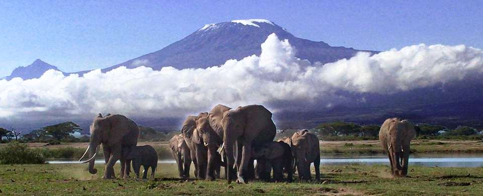 2-days amboseli_national_park.jpg