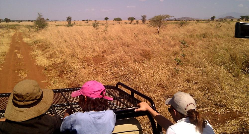 Nataba_Track,_Kidepo_Valley_National_Park.jpg