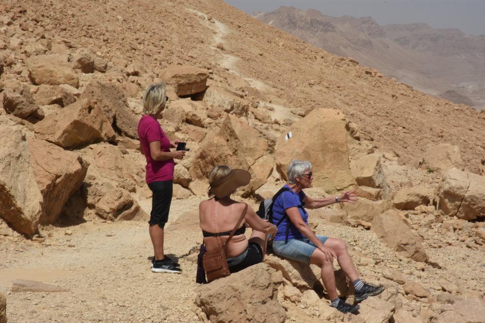 Mars 2018-8, wadi.JPG