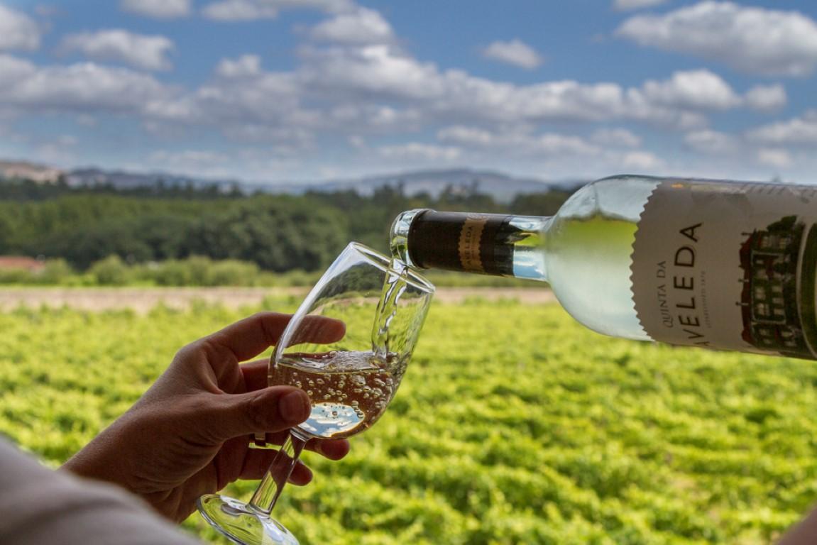 Kết quả hình ảnh cho wine in portugal