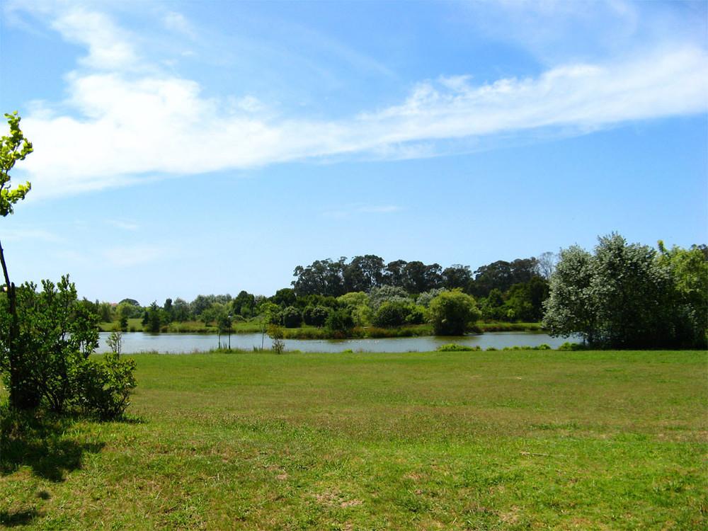 Parque da Cidade do Porto.