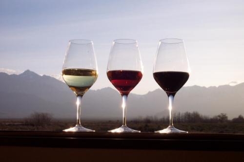 Portuguese wine presentation