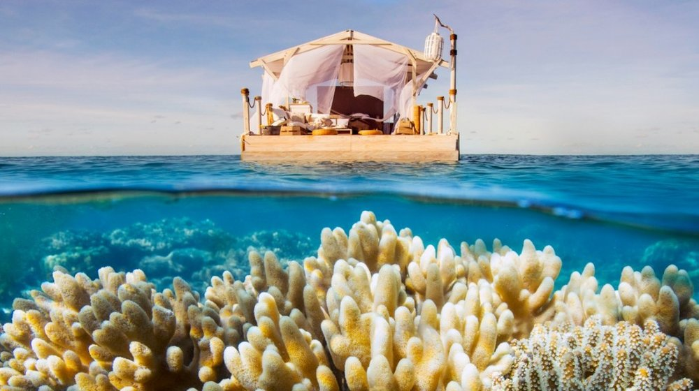 Airbnb-Great-Barrier-Reef-Home-1200x675-2-1060x594.jpg