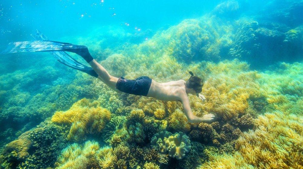 Airbnb-Great-Barrier-Reef-snorkeling-1200x800-2-1060x594.jpg