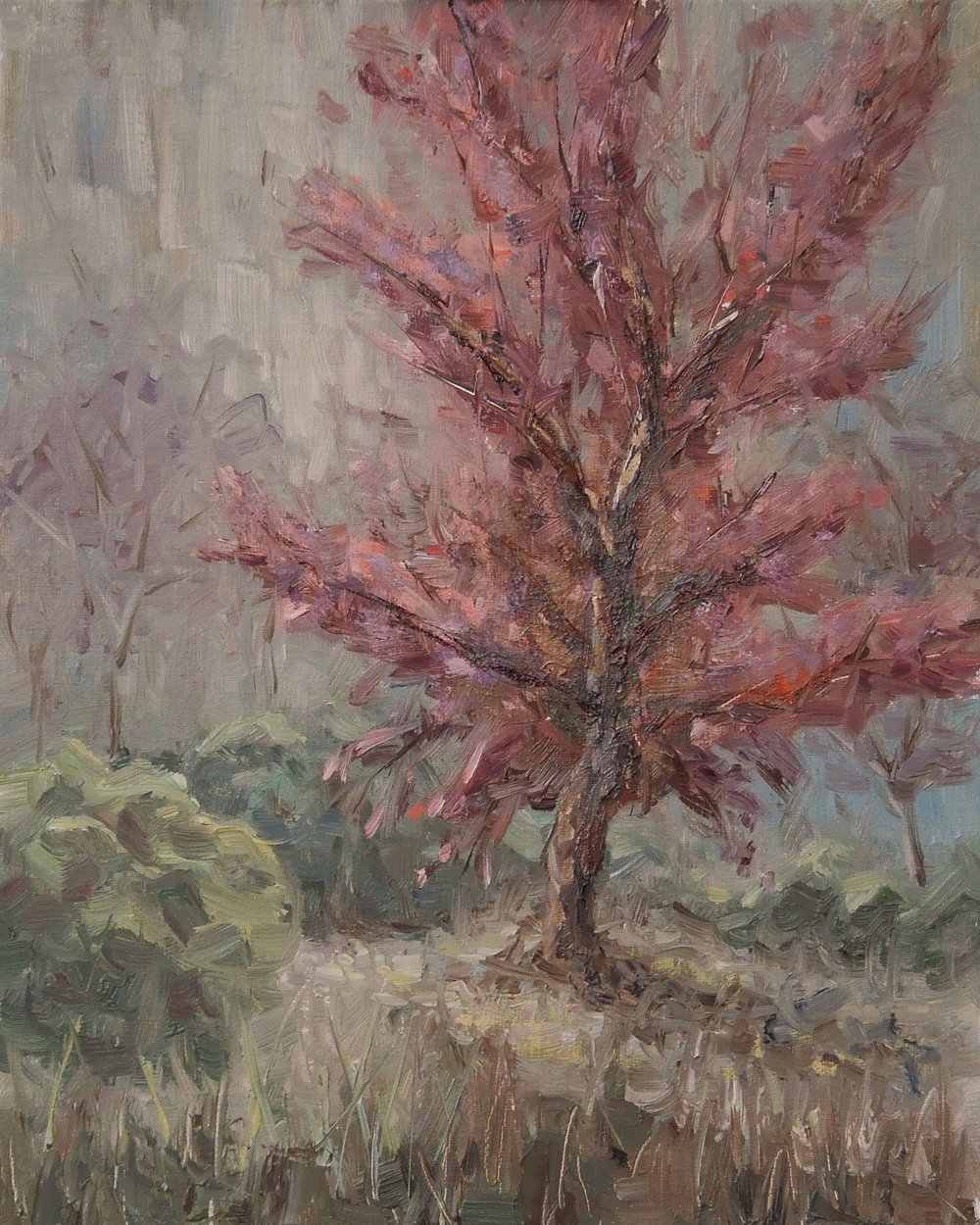 """""""Japanese Maple""""    10x8   Oil on linen panel   Available through  email"""