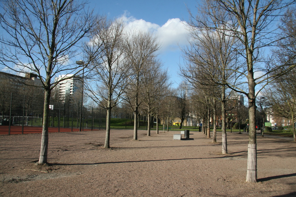 Phase 1. The elm square next to the MUGA completed in 2009