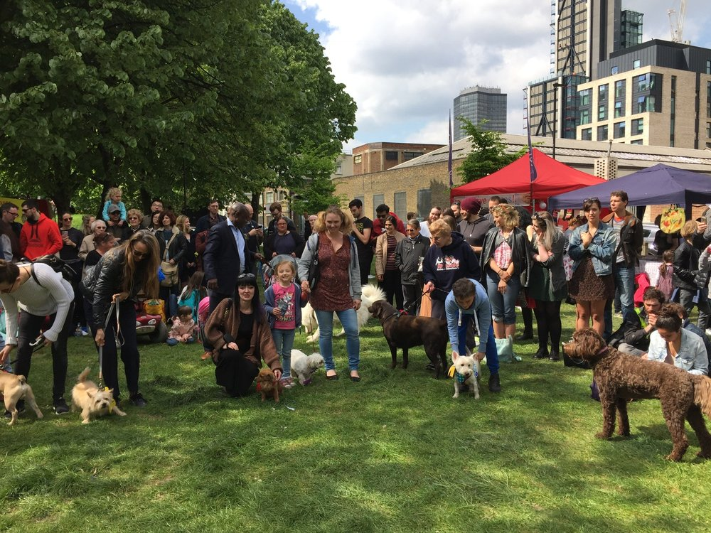 Friends of Vauxhall Pleasure Gardens DOG SHOW at the St George's day Festival 23 April 2017
