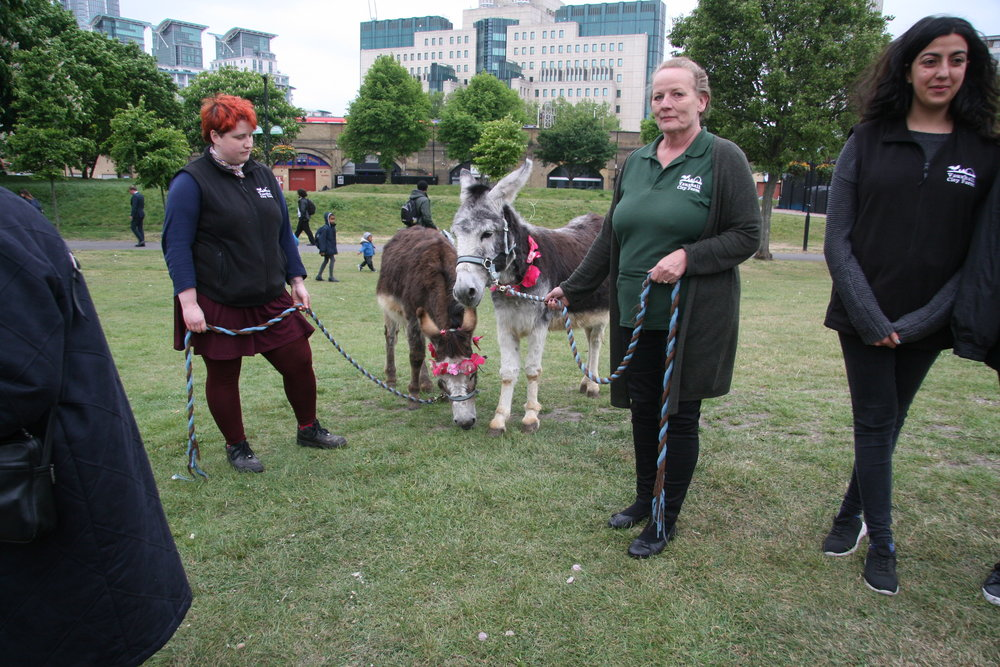 Caroll Bentall , Vauxhall City Farm manager and other farm representative with donkeys Bert and Ernie