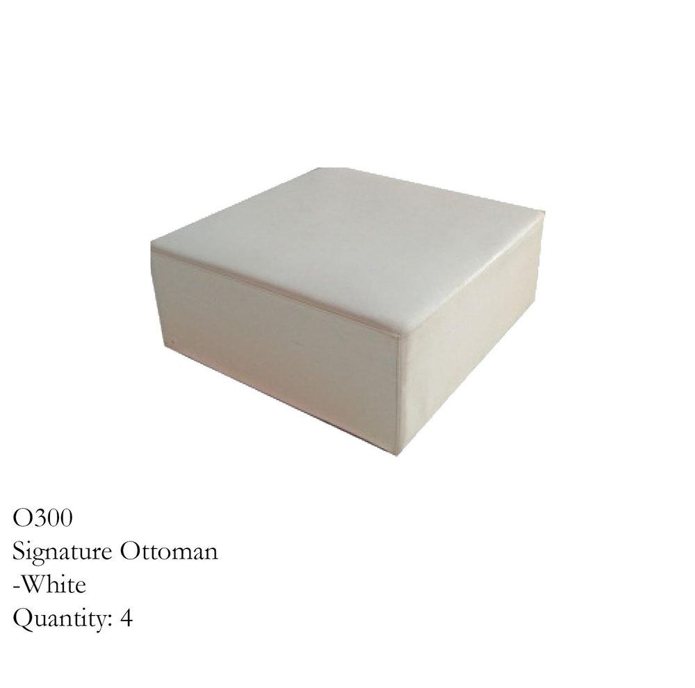 O300.jpg