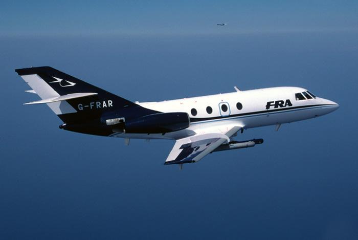 Falcon_1.jpg