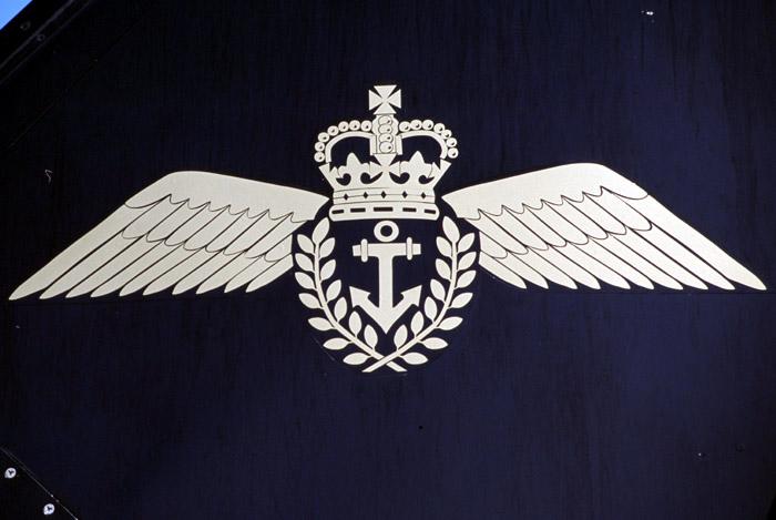 Navy Wings.jpg