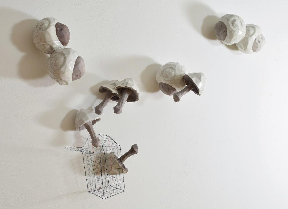 Basket of Mushrooms (front)