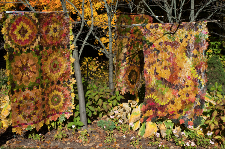 Quilts made of leaves hanging out to dry by Nancy Zimmerman