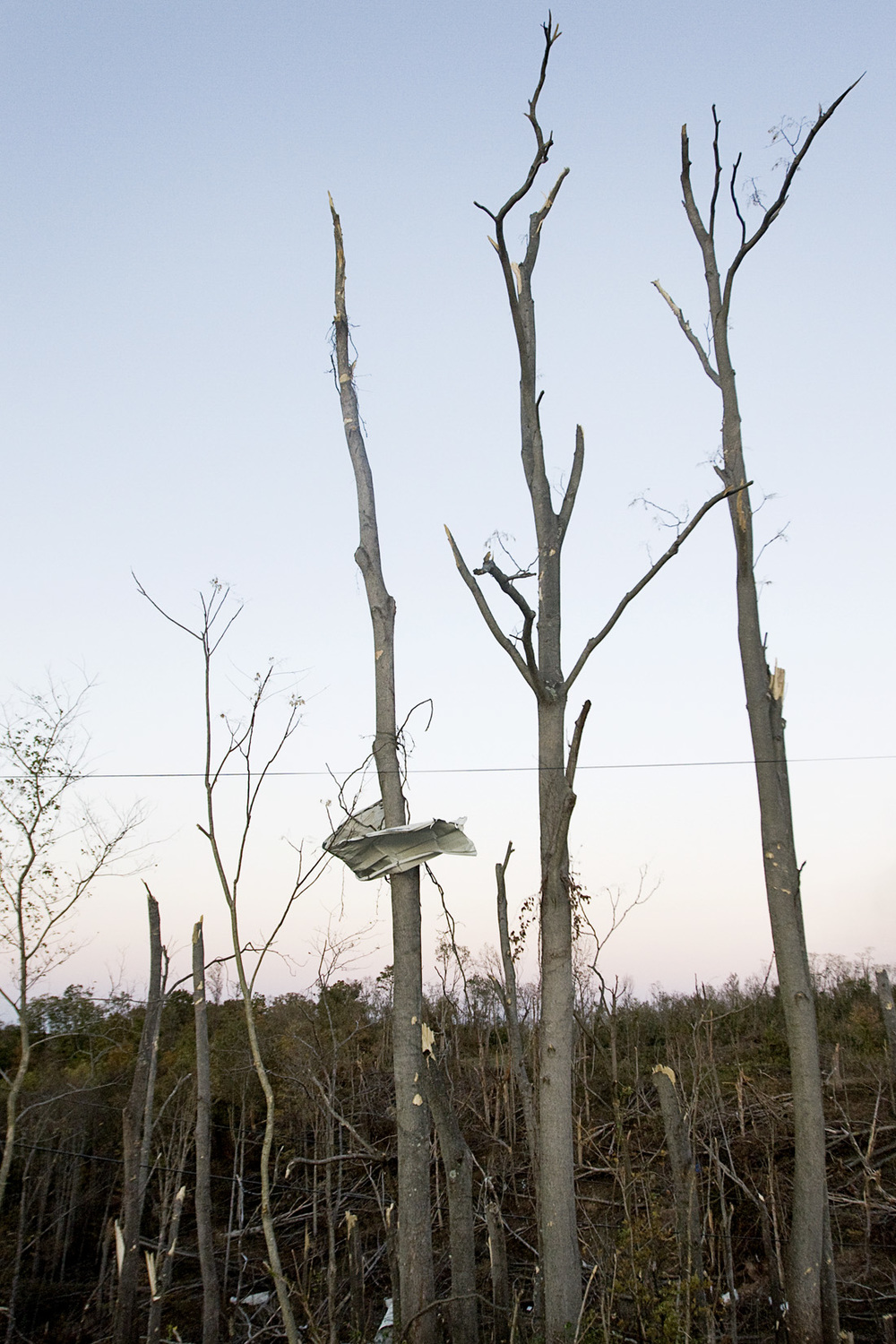 Debris rests among broken trees in Reedsville, Ohio.