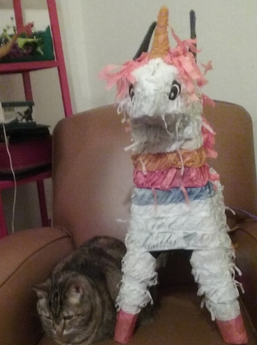 This grumpy cat and unicorn pinata are going to stare at you until you send that email.