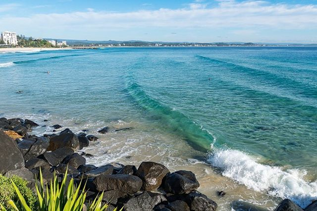 There's clear water, and then there's water so clear that you can see the waves forming from a few hundred meters away. #SnapperRocks  #Coolangatta, Queensland, Australia