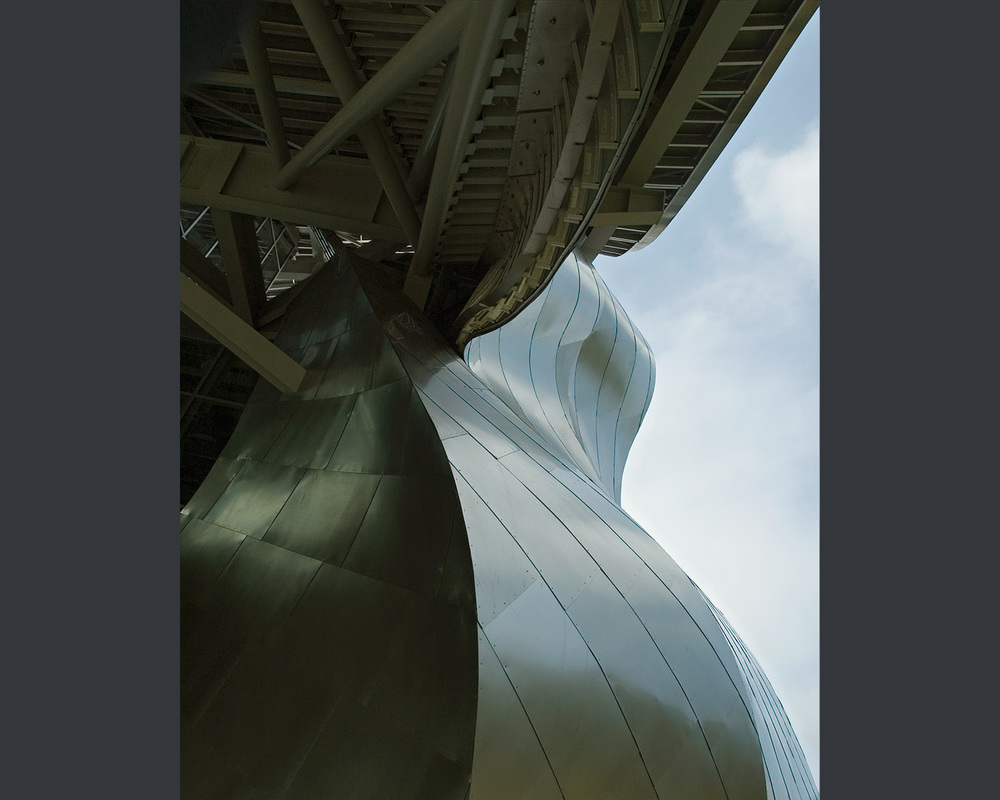 gehry roof