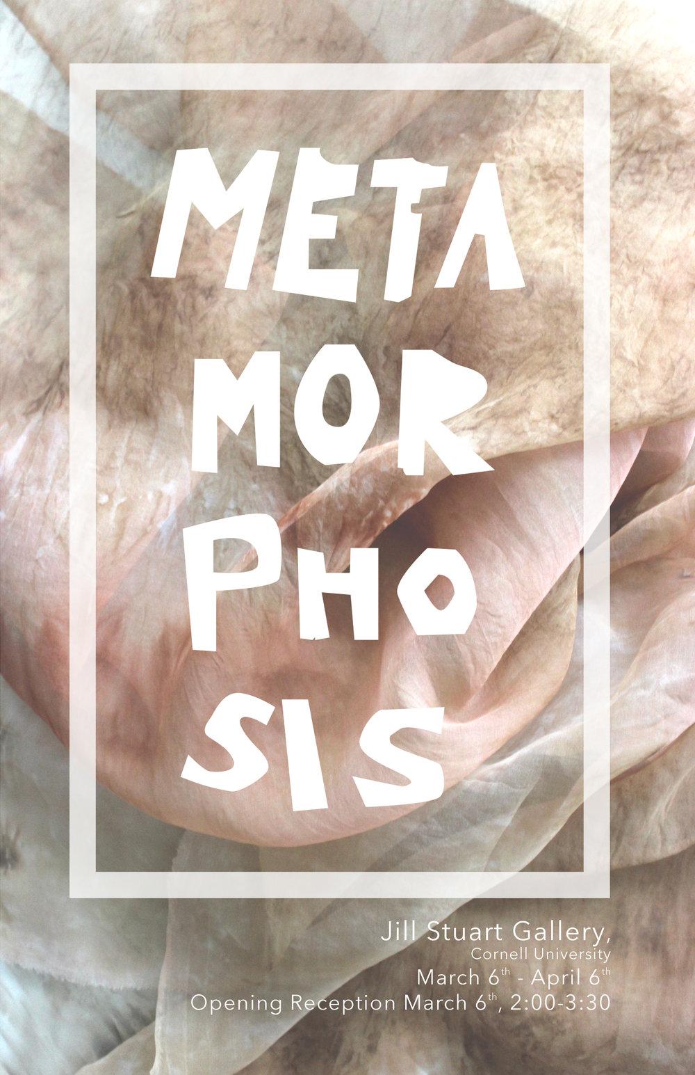 Meta Poster.jpg