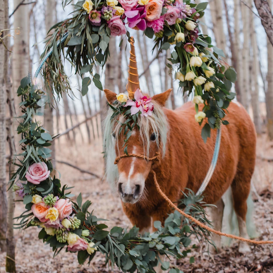 unicorn-pony-with-flowers