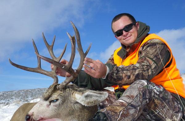 mule-deer-5.jpg