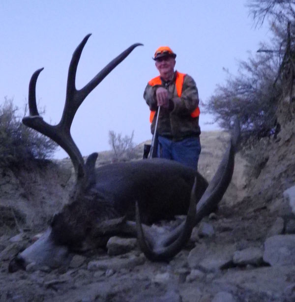 mule-deer234.jpg