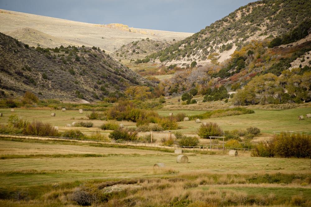 autumn colors copy 2.jpg