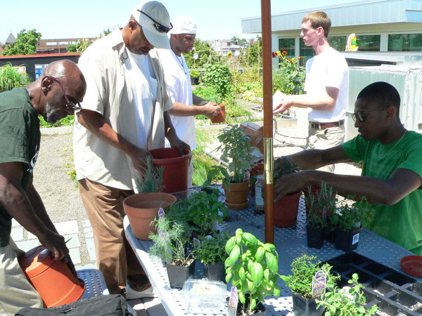 Volunteers and clients work on the rooftop garden located at the Northwest D.C. location.