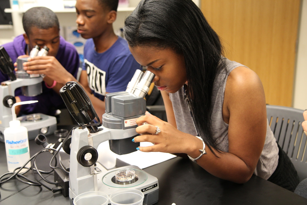 Georgetown Summer Immersion Program students observe tadpoles during their science class.