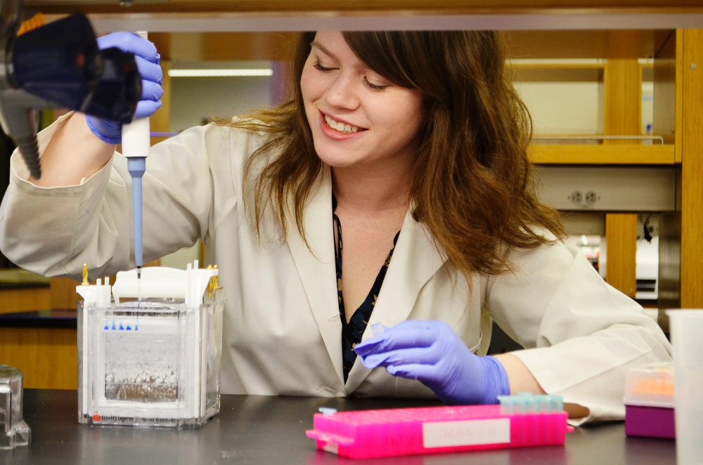 Breanna Walsh (C'17), Biology of Global Health Major  Biology of global health senior  Breanna Walsh  (C'17) conducts research in the lab of biology professor Heidi Elmendorf that may one day help identify drugs to combat a common intestinal parasite.  Read more .