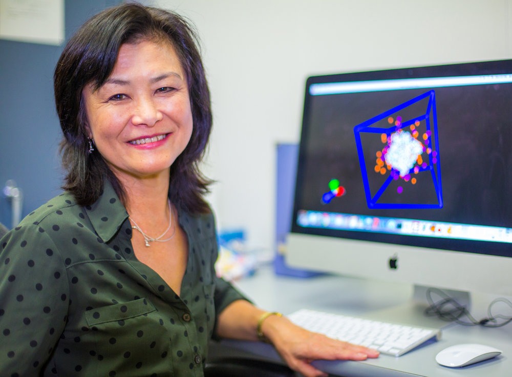 Toshiko Ichiye  Using a recent $ 1 million grant from the National Institutes of Health, chemistry professor Toshiko Ichiye conducts research that could contribute to the fight against foodborne illness.  Read more .